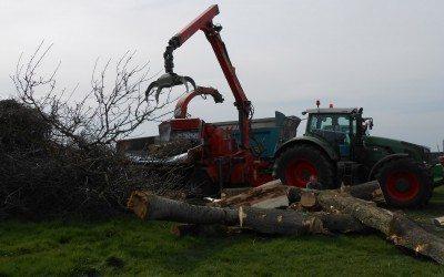Valorisation de la biomasse-énergie