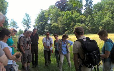 Biodiversité en forêt
