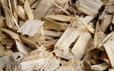Expérimentation biomasse-énergie avec la commune de Gesves