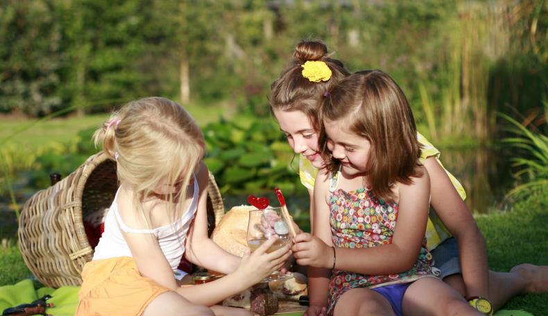 Réalisation d'aires de pique-nique familiales : appel à projets