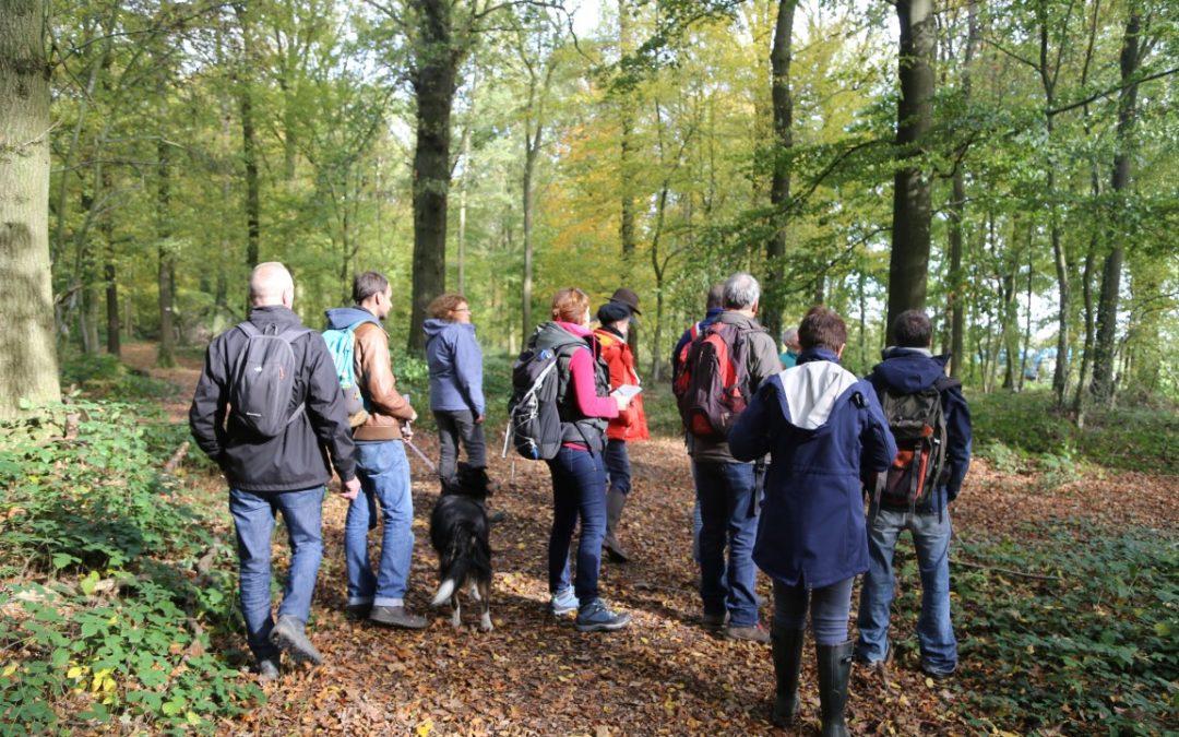 """Module """"forêt"""" à destination des guides touristiques"""