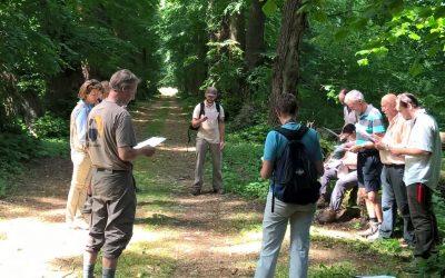 L'association forestière des Tiges et Chavées : se regrouper pour mieux gérer ses bois