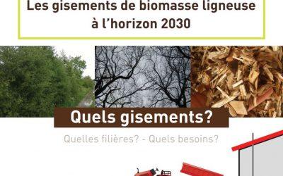 Biomasse – Etude Gisements