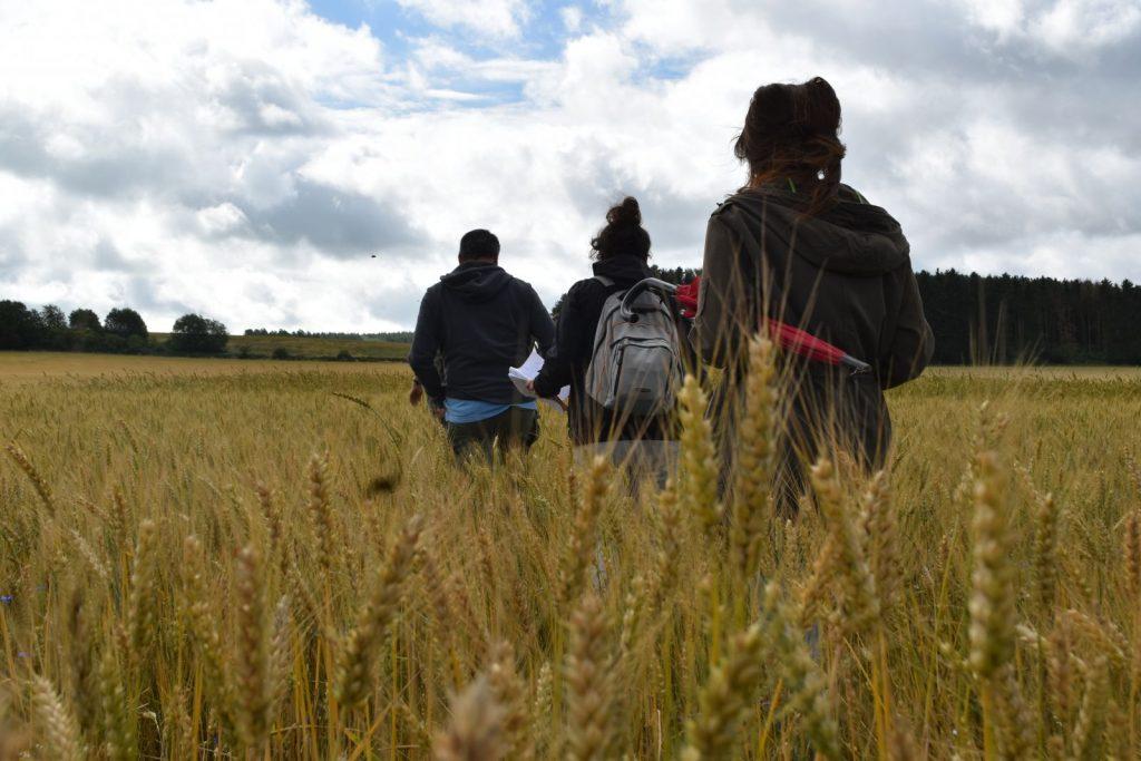 Agriculture : groupe autonomie fourragère et filière céréales