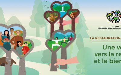 Nos forêts condruziennes avec les honneurs internationnaux ce 21 mars