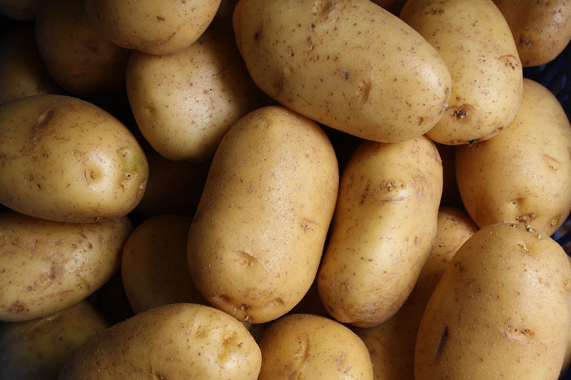 Concours – votre propre poids en pommes de terre !